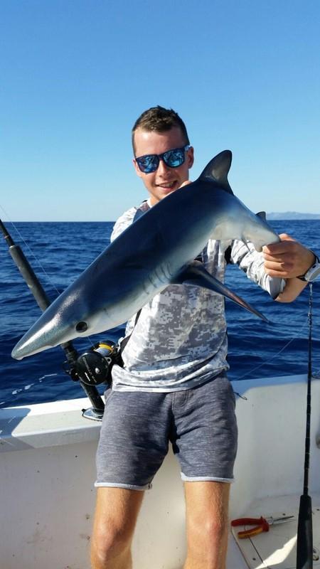 sharks-016-2017